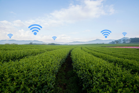 Connected & Smart Farming